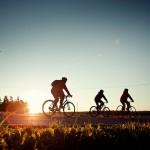 【自転車】初心者におすすめなクロスバイクの選び方